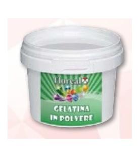 Gelatina in polvere